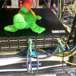 Picture of the rack... Guest appearance by #RocketTurtle
